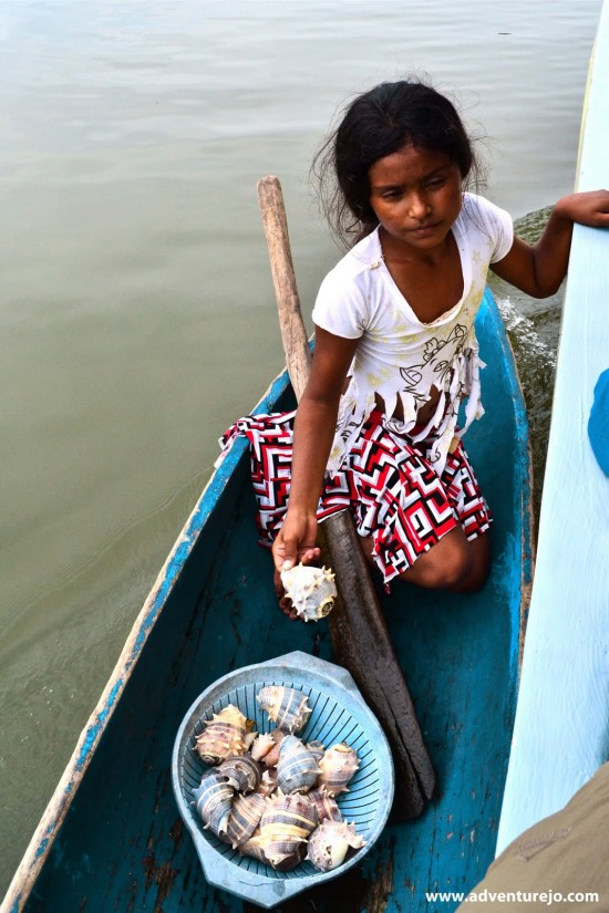 Photo of the day: She sells sea-shells