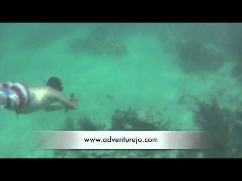 Snorkeling Tour to Akumal and Cenote Dos Ojos Caves - Tulum Mexico