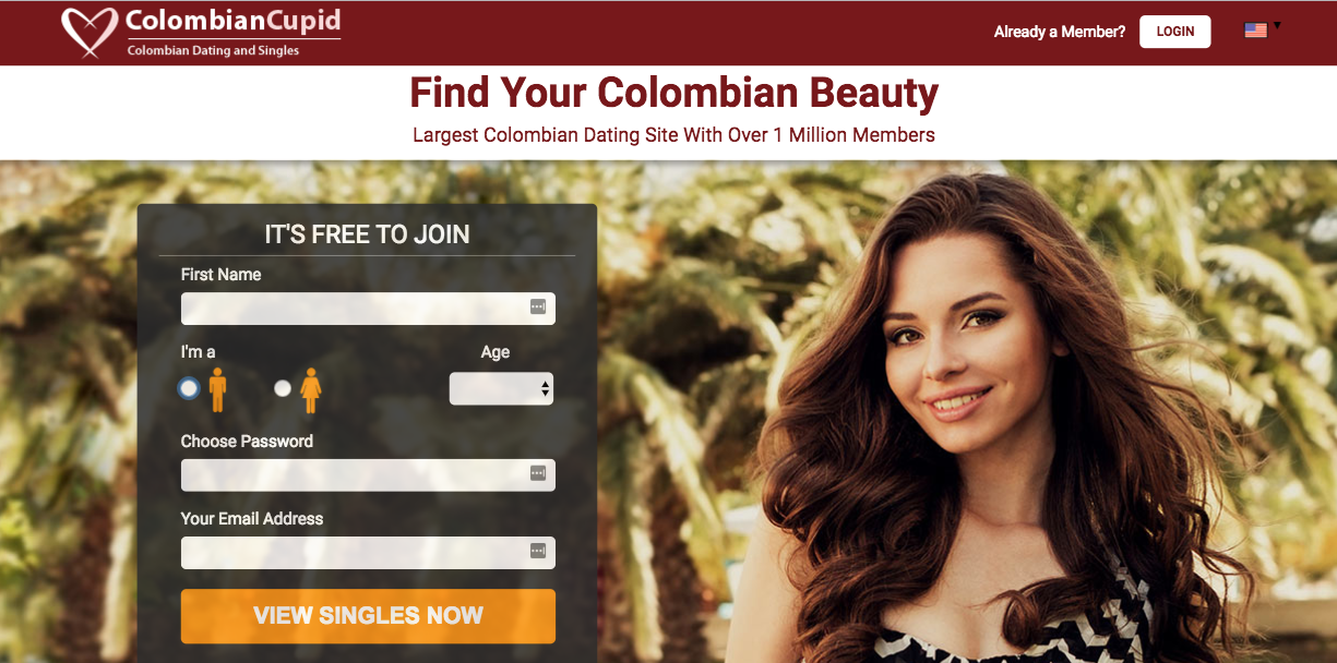 dating site experiences When bim adewunmi joined an online dating site, she was horrified to be called everything from 'ugly black girl' to 'nubian queen.