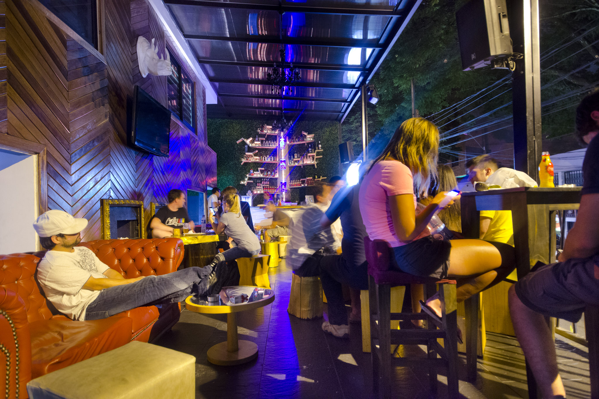 Tree Bar Medellin – Nightly Entertainment At The Happy Buddha Hostel in Medellin