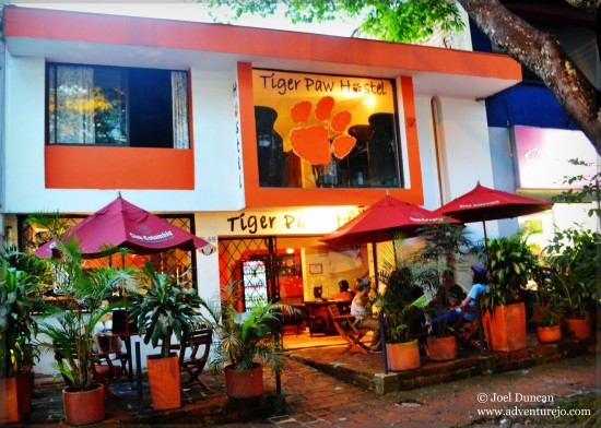 Choosing a hostel in Medellin Colombia - Tiger Paw Hostel, Casa Kiwi & Geo Hostel Compared