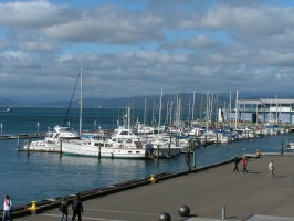 Travelling in New Zealand - Best ways to tour the Country (Guest Post)
